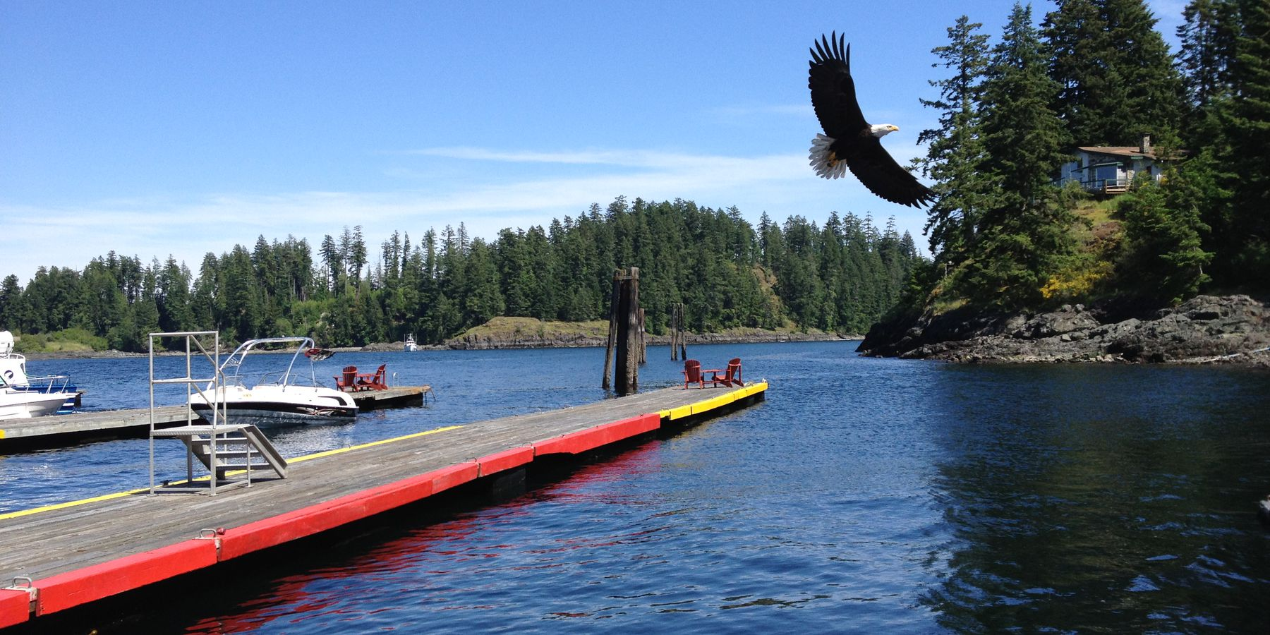 Campbell River - Vancouver Island - British Columbia - Canada - Doets Reizen