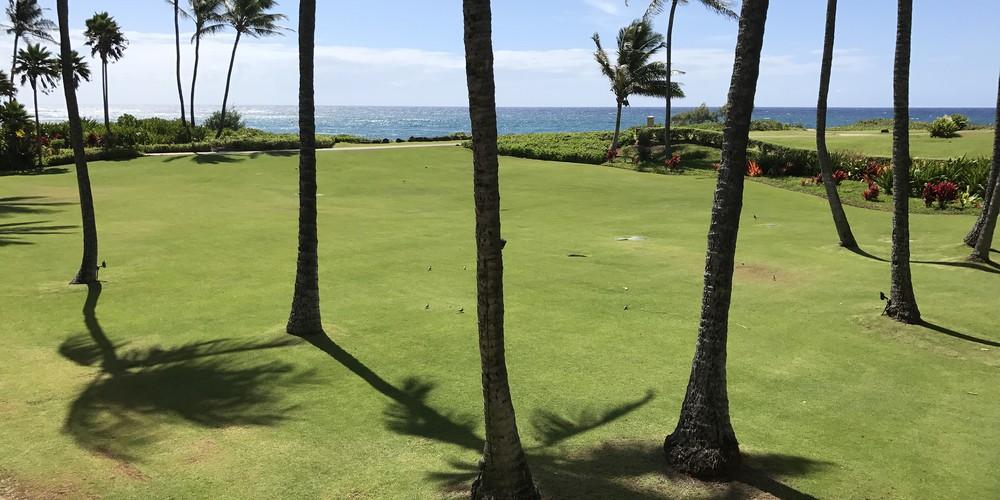 Kauai - Hawaii - Doets Reizen
