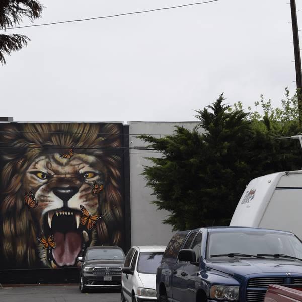 Hollywood RV Park, prachtige muurschildering