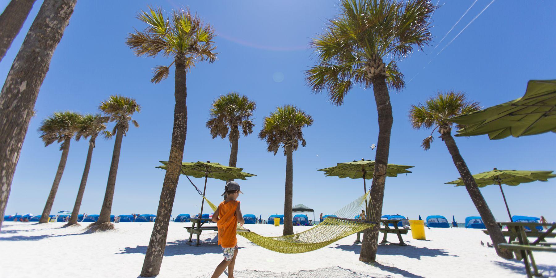 Palmbomen op Clearwater Beach