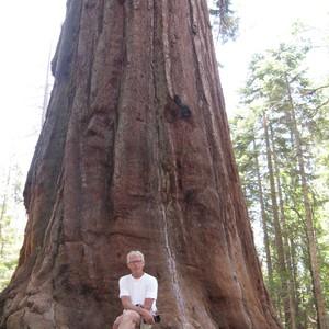 Reisdag 42 20 juni Yosemite Park - Dag 42 - Foto