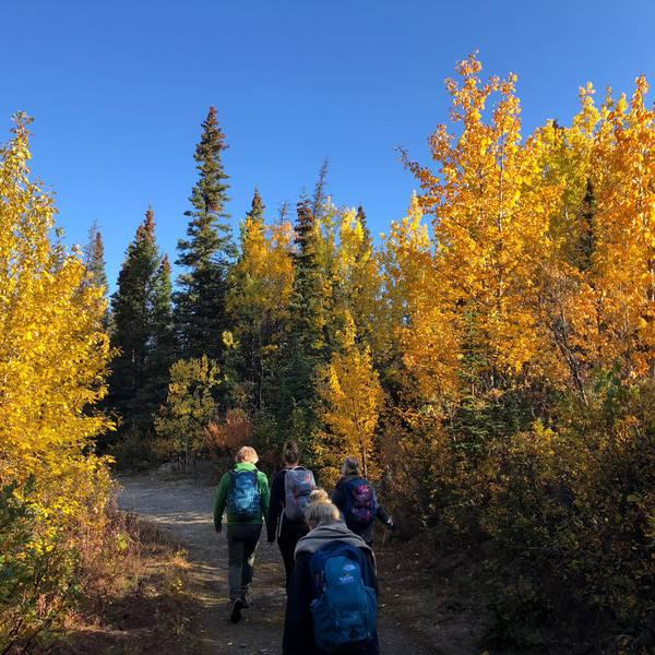 Kathleen Lake - Haines Junction - Yukon - Canada - Doets Reizen