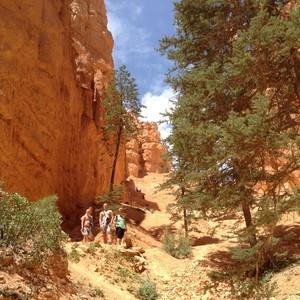 Bryce Canyon National Park - Dag 15 - Foto