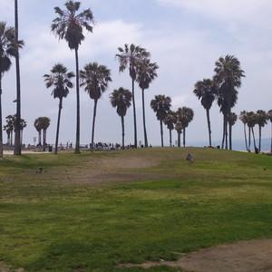 LA en Malibu Beach - Dag 18 - Foto