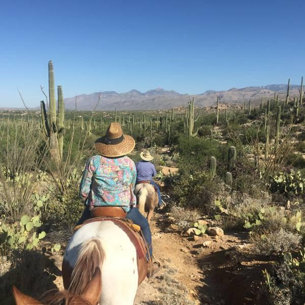 Tucson - Arizona - Doets Reizen
