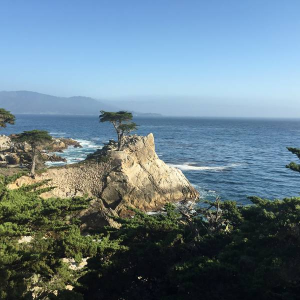 17 Mile Drive - Peble Beach - Carmel - California - Amerika - Doets Reizen