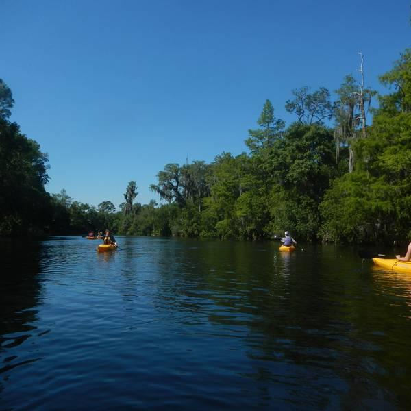 Adventure Challenge Eco Tour - Orlando - Florida - Doets Reizen