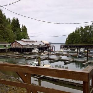 Campbell River - Telegraph Cove - Dag 8 - Foto
