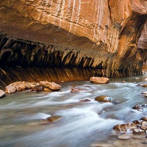 Zion National park - Dag 6 - Foto