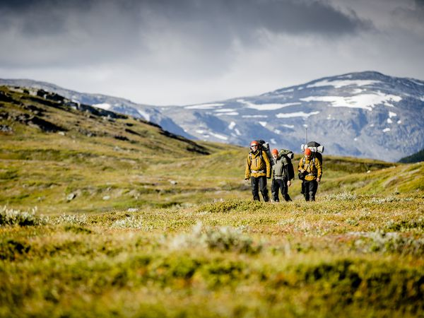 Zweeds Lapland - Doets Reizen - Vakantie Zweden - Credits SwedishLapland.com