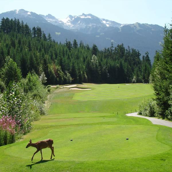 West Canada - Golf