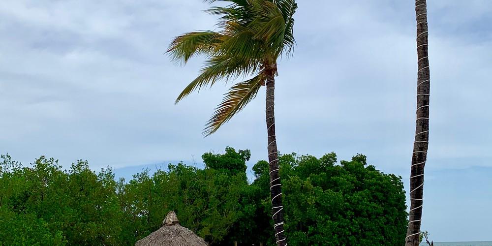 Ocean Pointe Suites - Hotel - Florida - Doets Reizen