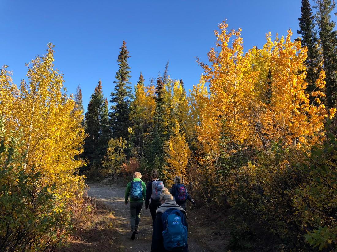 Kathleen Lake - Kluane National Park - Yukona - Canada - Doets Reizen