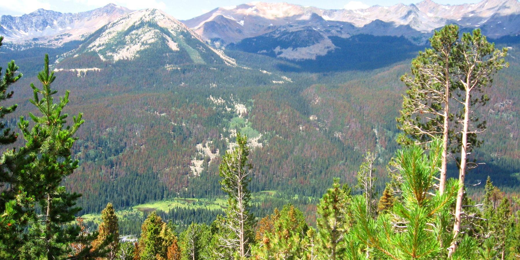 Rocky Mountain NP in Denver, Colorado