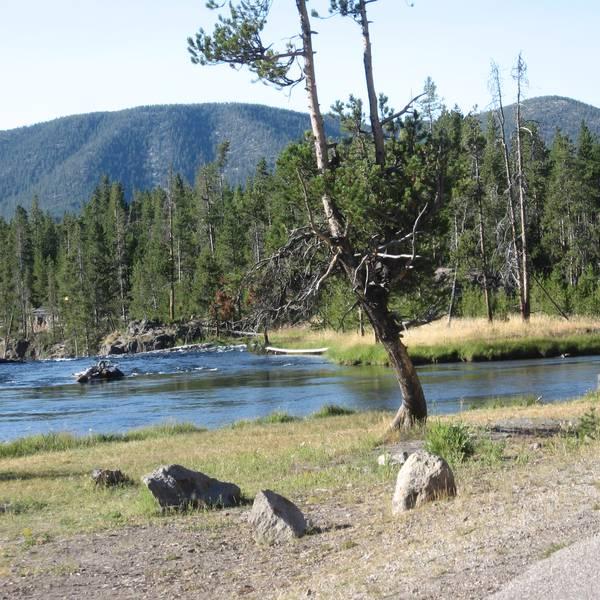 Yellowstone National Park - Wyoming - Doets Reizen
