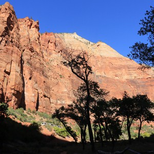Zion National Park - Dag 19 - Foto