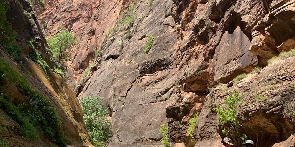The Narrows - Zion National Park - Utah - Doets Reizen