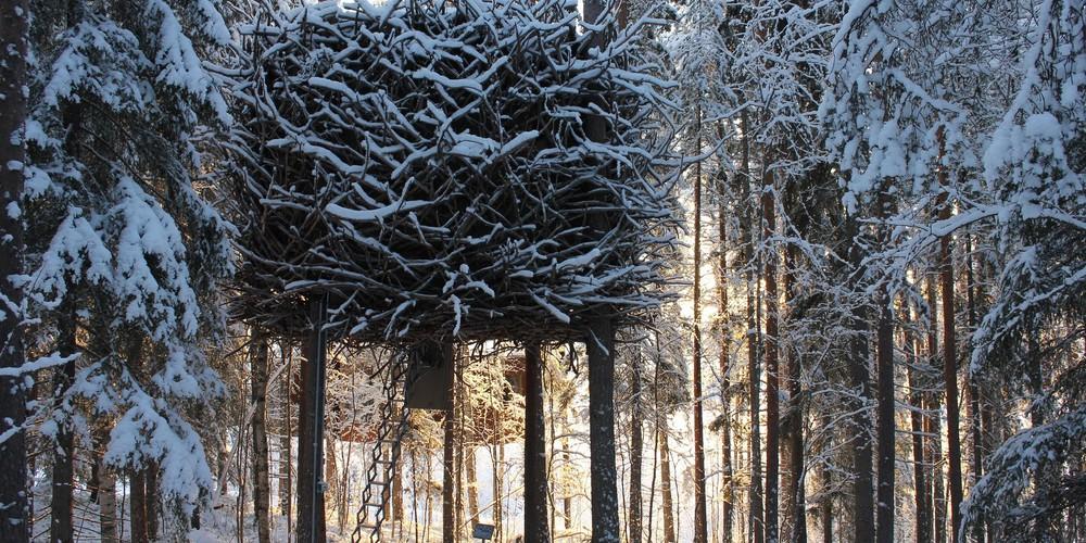 Treehotel - Doets Reizen - Vakantie Zweden - Credit Treehotel